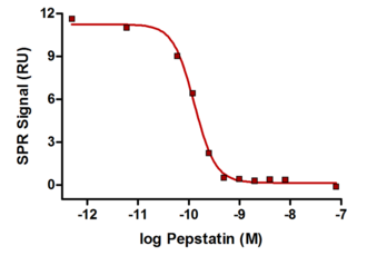 solution competition assay of cathepsin D with the protease inhibitor pepstatin