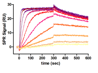 different concentrations of protease cathepsin D binding to a coupled inhibitor